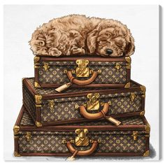 A playful blend of charming and luxurious, the Oliver Gal Sleeping Poodle Printed Wall Art features a poodle puppy curled atop a stack of Louis. Framed Wall Art, Frames On Wall, Canvas Wall Art, Wall Décor, Diy Canvas, Wall Art Prints, Canvas Prints, Framed Prints, Fashion Wall Art