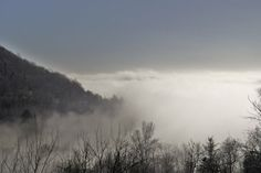 ..la nebbia agli irti colli nella valle del Chiampo. Italy