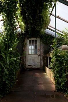 green house © Nicole Franzen