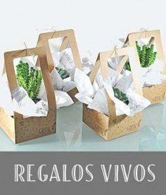 Grow B – Huertos Urbanos Craft Packaging, Candle Packaging, Flower Packaging, Suculentas Diy, Cactus Y Suculentas, Diy Gift Bags Paper, Decorated Gift Bags, Diy And Crafts, Paper Crafts