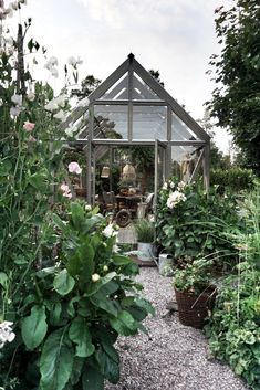 Oasis, Back Gardens, Outdoor Gardens, Dream Garden, Home And Garden, Greenhouse Shed, Wooden Greenhouses, Backyard Projects, Edible Garden