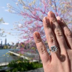 Spring blooms, a summers hope, and an Asscher Cut that casts a sizable shadow! A little summers romance for you today 🌸💎 Asscher Cut Diamond Engagement Ring, Solitaire Setting, Downtown New York, Spring Blooms, Custom Jewelry, Diamond Jewelry, Wedding Bands, Romance, Diamond Jewellery