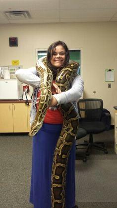Ball python 70 lbs.