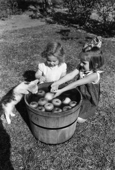 Bobbing for apples with a kitty friend - 1935