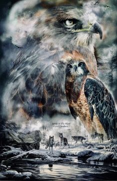 This is a beautiful picture depicting the spirit of the Native American totems. Native American Wolf, Native American Paintings, Native American Pictures, American Indian Art, Animal Spirit Guides, Spirit Animal, American Wallpaper, Animal Reiki, Eagle Pictures
