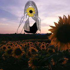 Como eu sou um girassol, você é meu sol.