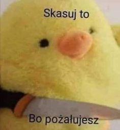 Cute Pictures, Cool Photos, Self Deprecating Humor, Polish Memes, Weekend Humor, Funny Mems, Everything And Nothing, Malu, Me Too Meme