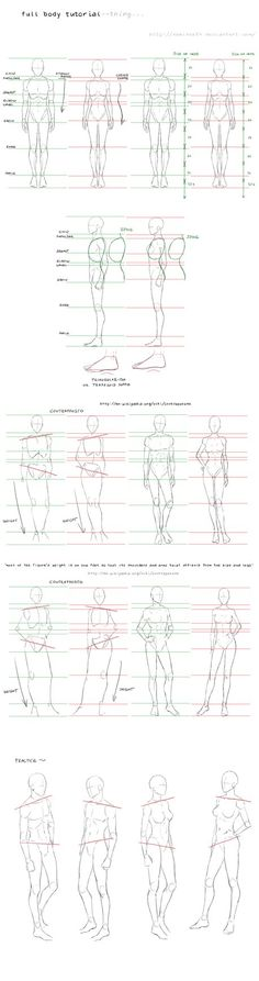 full body tutorial by nominee84 on @DeviantArt