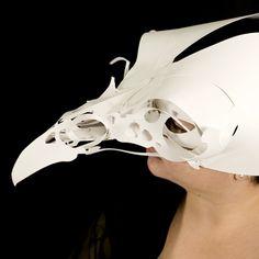 Raven Skull Detail by VisioLuxus, via Flickr