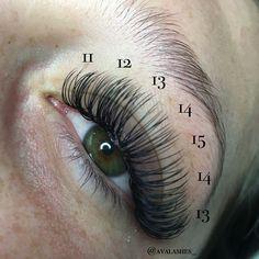 Ava Lashes Eyelash Extensions Classic Mink DD curl Lash Mapping Semi Permanent Eyelash Extensions