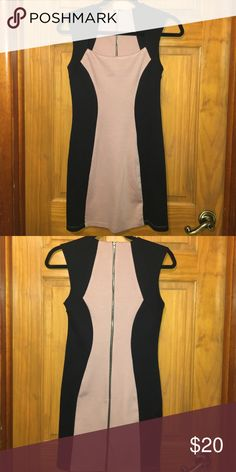 Color Block Dress Nudish/Pink and Black Color Block Dress. Great Silhouette with Full Back Zipper. Forever 21 Dresses Mini