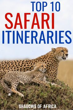 Shadows of Africa's Top 10 Most Popular Safari Itineraries - Travel to Africa