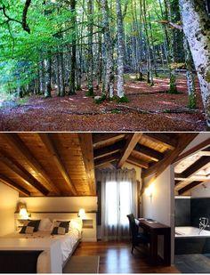 Selva de Irati El Hotel Iribarnia es el lugar ideal para conocer las zonas más verdes de Navarra,