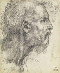Andrea del Sarto (Andrea d' Agnolo), 1486-1530, Italian, Study of a Bearded Man in Profile, c.1526–27.  Black chalk, possibly with gray wash, 8 9/16 x 7 1/8 inches.  Galleria degli Uffizi, Florence.  High Renaissance.