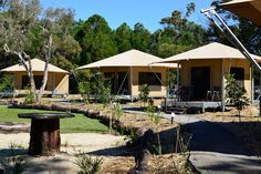 Tents at Glamping at Castaways on Moreton Island