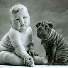 Acostumbra a tu perro al bebé antes de que sea tarde | Cuidar de tu mascota es facilisimo.com