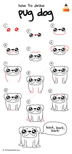 How To Draw Pug The Dog