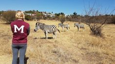 Wild at Heart Pretoria, Nature Reserve, Bird Species, Wild Hearts, Great Places, Chic, Blog, Shabby Chic, Elegant