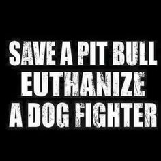 pitbulls & tattoos - This I pledge to every pibble: I promise to protect you. I promise to be your voice. Shelter you… - Dog Quotes, Animal Quotes, Animal Pics, I Love Dogs, Puppy Love, Pitt Bulls, Dog Shaming, Pit Bull Love, The Victim
