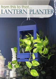A thrift store lantern can become a hanging indoor planter by just removing the glass panes! Garden Lanterns, Hanging Lanterns, Diy Hanging, Lanterns Decor, Diy Craft Projects, Diy Crafts, Creation Deco, Indoor Planters, Indoor Gardening