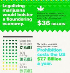 The Insane Economics of Not Legalizing Marijuana. What you think?