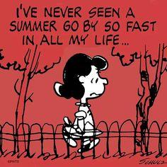 Where did summer go??