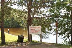 Driftwood Provincial Park near Ottawa, Ontario Ottawa River, Ottawa Ontario, Driftwood, Trail, Destinations, Hiking, Camping, Landscape, Park