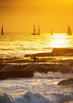 Santa Cruz, California...Most people leave their heart in San Francisco, but mine can be found right here!