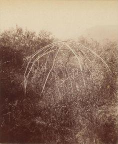 An old medicine tent, 1898 From an album of Joseph Tyrrell's photographs of the Klondike, 1898-1899