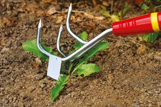 2 tools in 1. Check out the Culti-Weeder from WOLF-Garten.