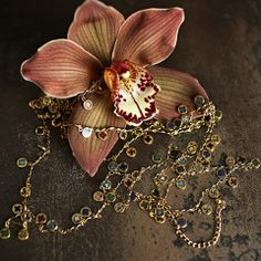 Queen of The Foxes Lover Necklace | The Collectors Co