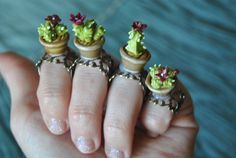 Adjustable ring cactus in a pot - Purple flower cactus. Ready to ship!! By Sifaka