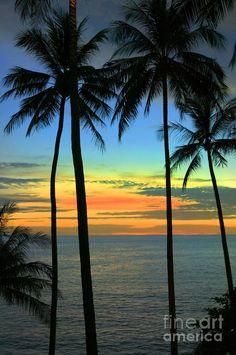 ✮ A serene beach scene on the shores of the Andaman Sea, Phuket, Thailand