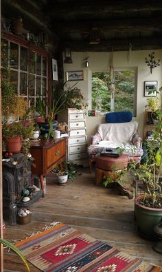.love this room full of plants and old furniture!!