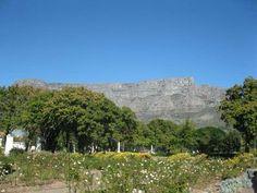 Nuwe oë vir betowering van die skoonste Kaapstad