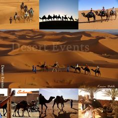 For a real expedition of the Moroccan desert life in Tafilalet