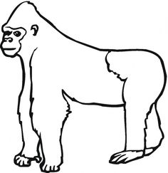 silverback gorilla coloring pages - photo#39
