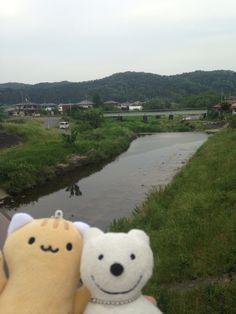 クマ散歩:品行方正なクマは越生線で行った The Bear took the O Train from TJ-47!♪☆(^O^)/  #品行方正 #Bear #クマ