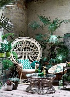 This peacock chair in its element, with a green cushion and tropical plants to enhance the urban jungle effect Polly Wreford Photography Interior Tropical, Tropical Decor, Botanical Interior, Tropical Furniture, Botanical Decor, Tropical Garden, Tropical Plants Uk, Botanical Bedroom, Lush Garden