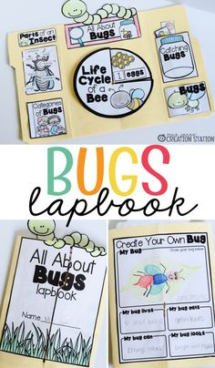 This bugs lapbook is a great activity for little learners! It is so important for kids to learn about science and with this lapbook they can learn about the life cycle of bugs! Try this great bug lapbook with you little learners today! Insect Activities, Science Activities, Science Worksheets, Activities For Kids, Science Lessons, Science Resources, Kindergarten Science, Kindergarten Classroom, Teaching Science