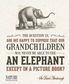 The question is are we happy to supposed that our grandchildren will never be able to see an elephant except in a picture book? - Sir David Attenborough