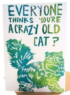 everyone thinks youre a crazy old cat // birthday card, song lyrics, the eels, quote