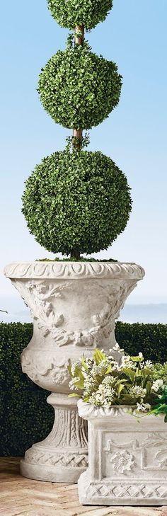 Inspired by the romantic grandeur of historical Provencal gardens, our eye-catching, all-weather planters feature gorgeously detailed designs including botanical motifs, ribbon laurels and artfully molded rims. The sturdy pulverized stone and polyresin construction ensures it will be a staple for showcasing flowers, grasses and topiaries for years to come. Trough Planters, Garden Planters, Boxwood Topiary, Topiaries, Red Poppies, Red Flowers, Garden Oasis, Home And Garden, Dream Home Design