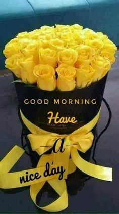 Good Morning Messages: If you like to share Good Morning with your family, relatives, lover & friends. Find out unique collections of Good Morning Msg, best good morning messages for friends in Hindi, morning love messages. Good Morning Roses, Good Morning Texts, Good Morning Coffee, Good Morning Sunshine, Good Morning Messages, Good Morning Good Night, Morning Pics, Morning Pictures, Sunday Morning