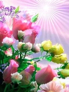 ☆♥ Vives En Cada Latido De Mi Corazón ☆♥: bellas flores paisajes y mas