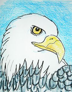 Bald Eagle- How to Draw Worksheets for The Young Artist: How to Draw an Eagle Face Lesson and Worksheet Drawing Projects, Drawing Lessons, Art Lessons, Drawing Step, Drawing Websites, Eagle Face, Bald Eagle, 2nd Grade Art, School Art Projects