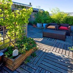 #KBHomeOrlando Rooftop Garden Design Ideas Part 89