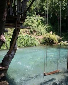 Outdoor treehouse swing and pool. So picturesque!