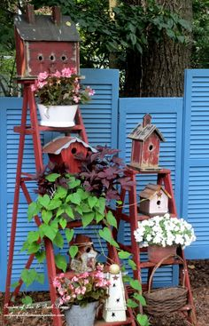 Rustic Old Ladders...full of birdhouses in the garden.   Len and Barb Rosen.