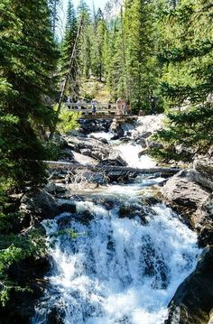 Tips for Hiking to Hidden Falls in Grand Teton National Park, Wyoming. Want to avoid the crowds on this busy hiking trail near Jackson Hole, Wyoming?Plan a fall getaway when the trail will be considerably less crowded.